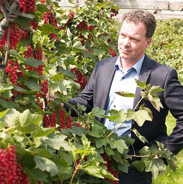 Erik de Vin - Fruitteelt - Fidus Advies