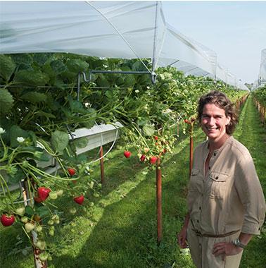 Esther van den Wijngaart - voedingstuinbouw- Fidus Advies